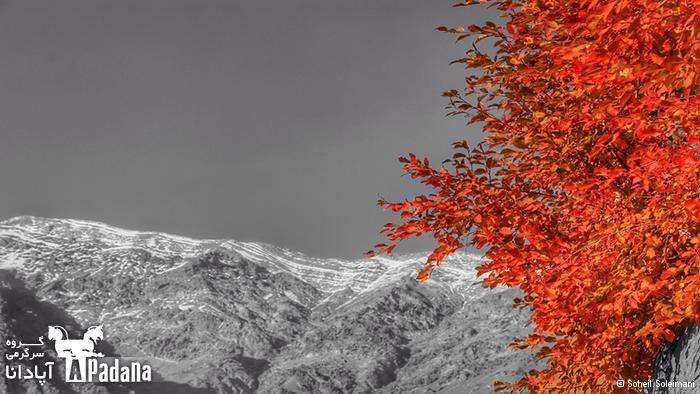 هنر عکاسی: گــزارش تصــویری از پاییــز رویــایی ایــران