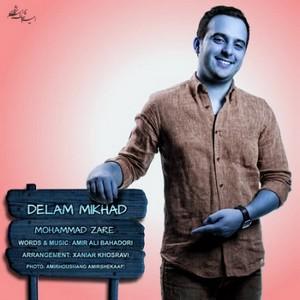 دانلود تك آهنگ شاد محمد زارع بنام دلم میخواد