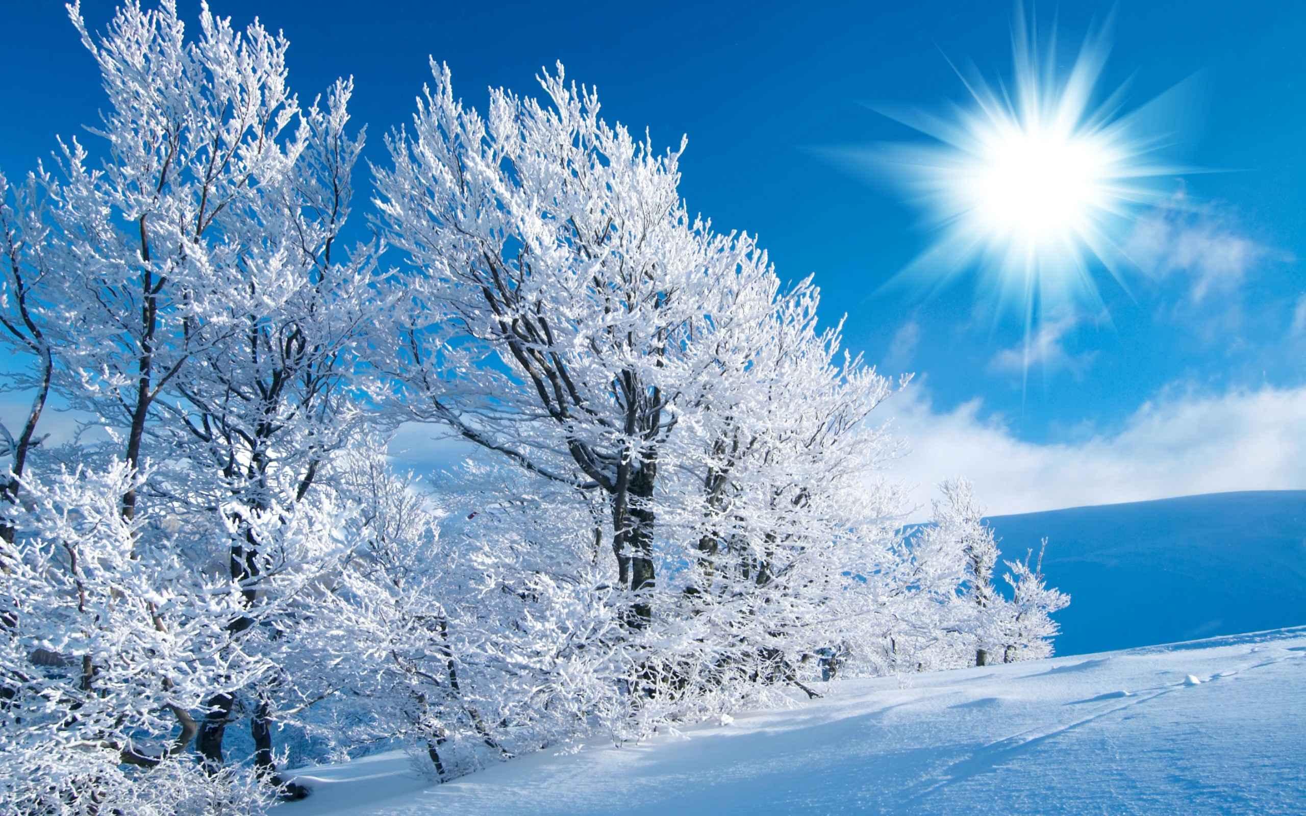 منظره های بی نظیر  زمستانی