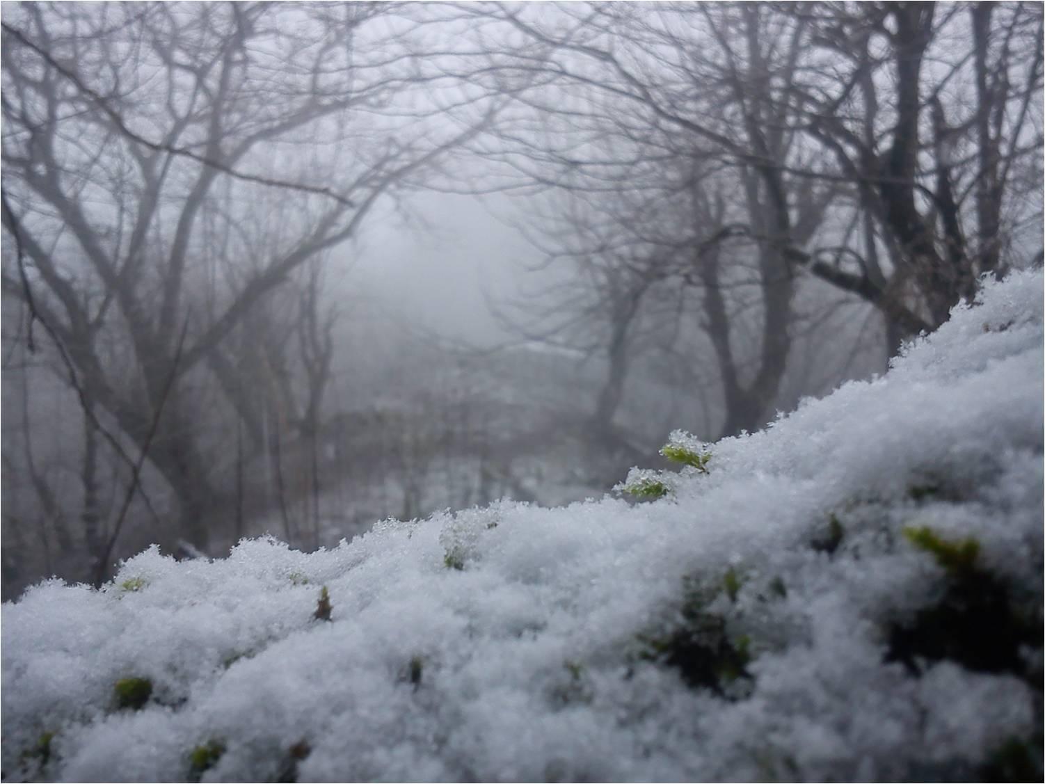 بارش برف 92 در ارتفاعات روستای شولم