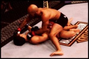 12.14.2013 : اخبار بعد از UFC on FOX 9