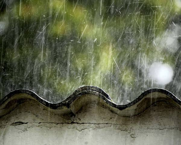سوختم از تشنگی ای کاش باران می گرفت