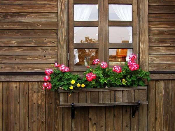 مگذار که چون پنجره ای بسته بمانم  ای عشق!بیا معجزه ی وا شدنم باش