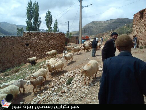 سبد کالایی که مردمان روستایی داده نیم شود .