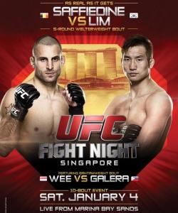 گالری تصاویر ufc fight night 34 : 'saffiedine vs. Lim'