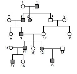 نمونه سوالات ژنتیک کنکور