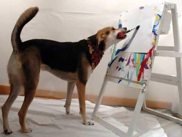 مطالب داغ: بانمک ترین حیوانات هنرمند