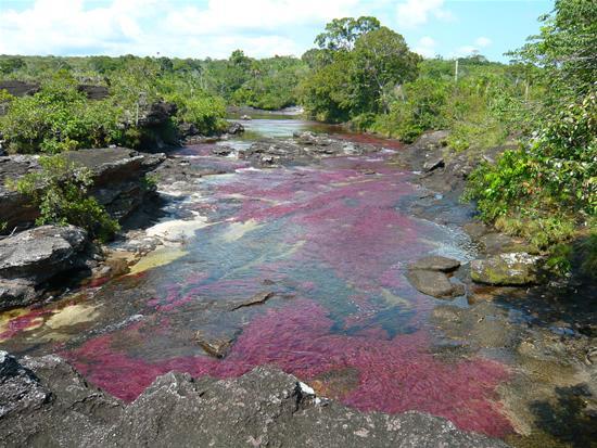مطالب داغ: رودخانه پنج رنگ