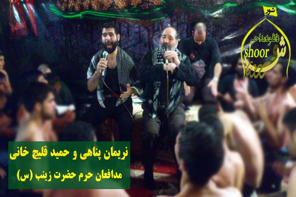نریمان پناهی و حمید قلیچ خانی