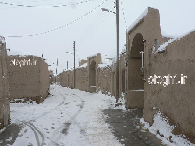 تصاویر بارش برف در حسن اباد جرقویه