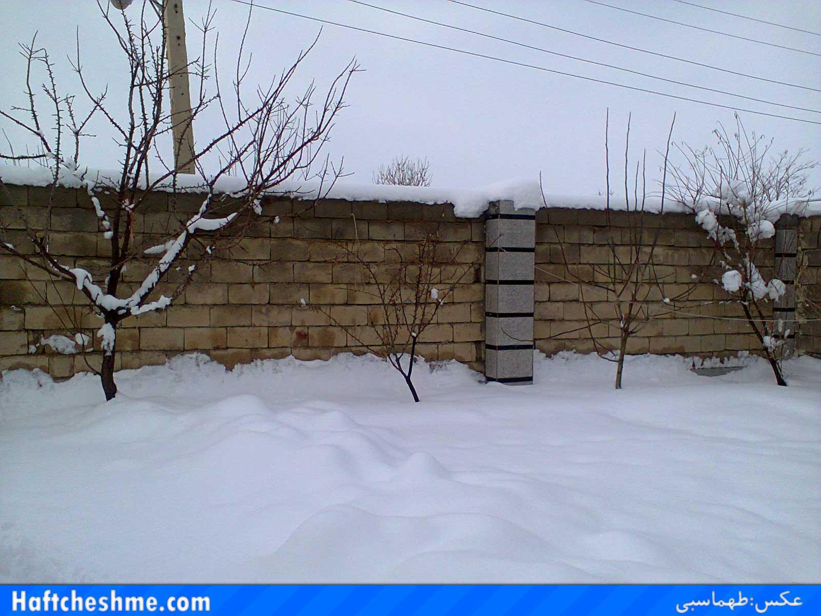http://s5.picofile.com/file/8108035284/barf4.jpg