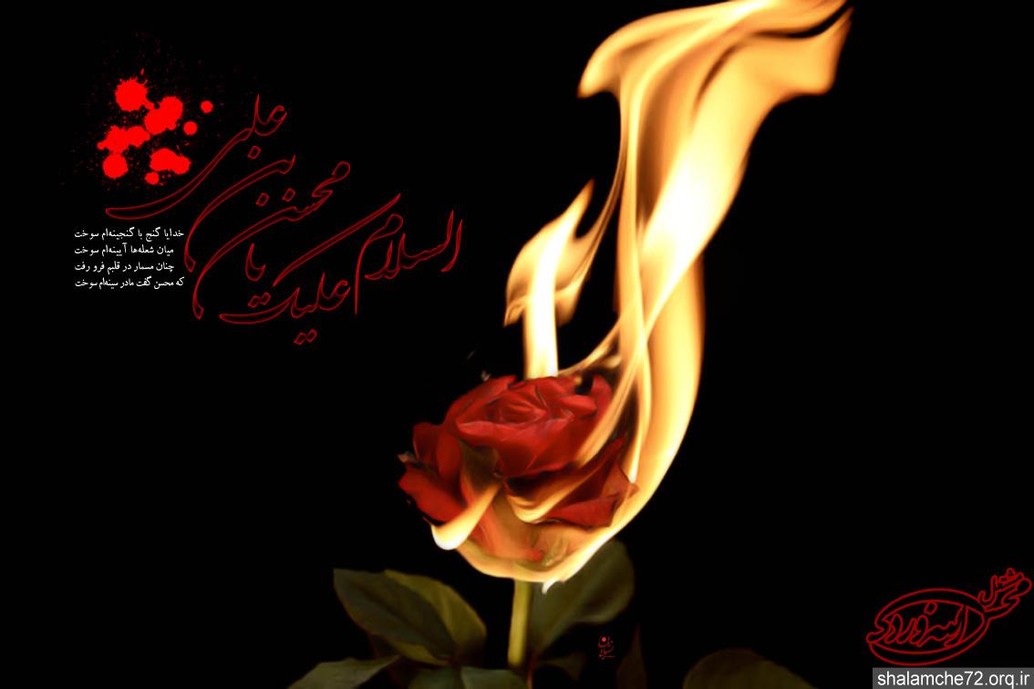 حضرت محسن(ع)---شلمچه سرزمین عشق وایثار