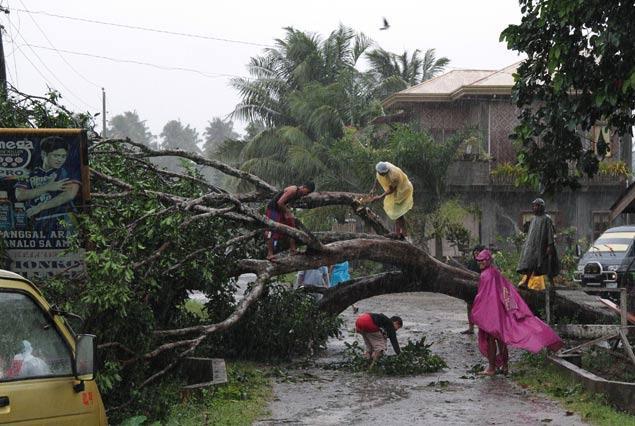 ترین ها:فیلیپین مرکز قویترین طوفان ثبت شده تاریخ