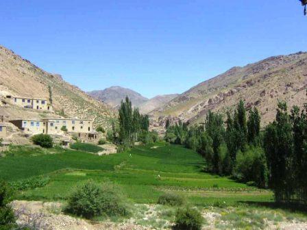 کانال+تلگرام+مداحی+افغانی
