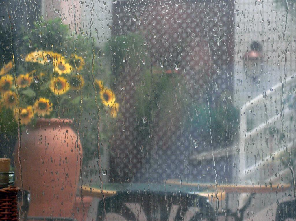 عکس باران پشت پنجره