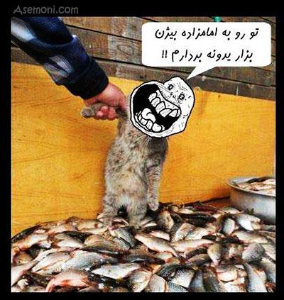 تورو به امام زاده بیژن :))