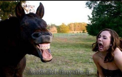 شیهه کشیدن اسب و دختر ...