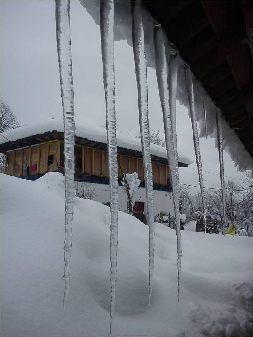 قندیل 1مترو 4سانت روستای شولم برف 92