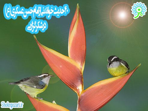 چهل حدیث از امام حسن عسکری(ع)