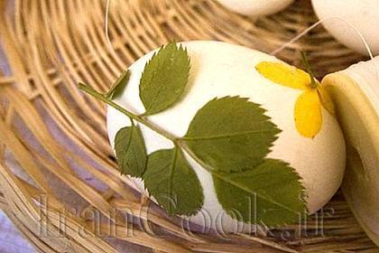 تخم مرغ گیاهی!