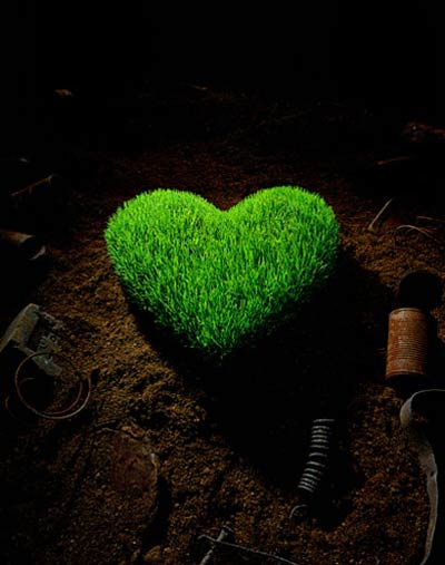 hou3620 - سبز کردن سبزه عید - متا