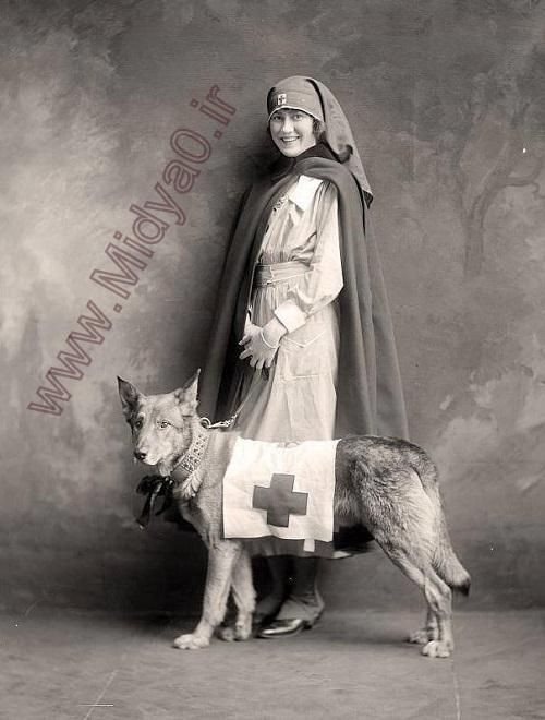 عکس یک خانم زیبای پرستار در جنج جهانی اول,عکس,عکس قدیمی,نگ جهانی اول,عکس دختر,عکس های دیدنی,عکس حیوانات,جدید,میدیاصفر,عکس های زیبا,عکس های قدیمی,عکس های پرستار