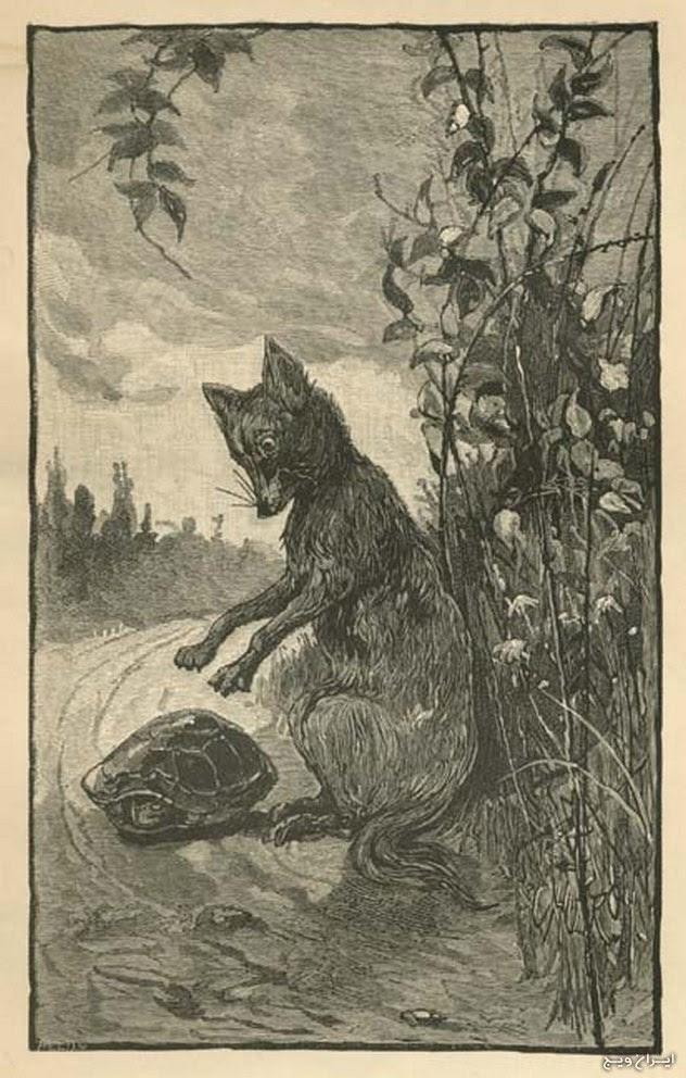 روباه ها و آواز فلکلور