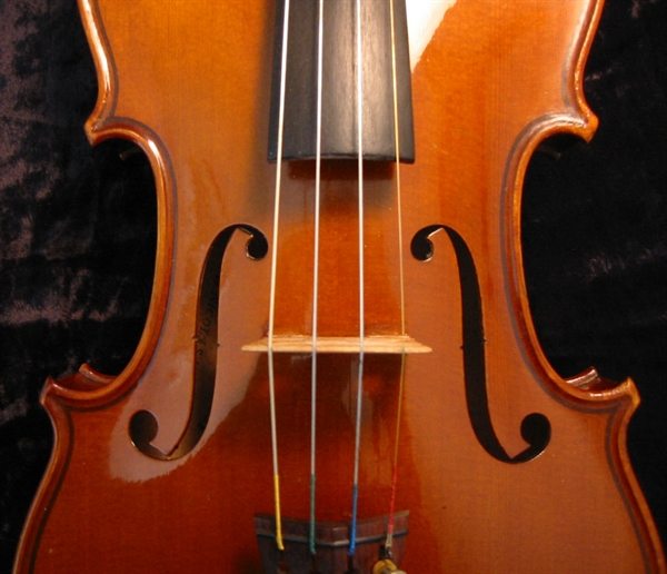 http://s5.picofile.com/file/8115156292/Violin1.jpg