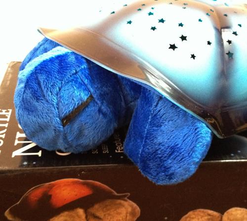 خرید چراغ خواب شلمن آبی