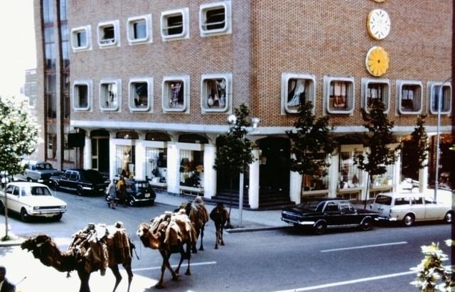 عکس قدیمی از تهران -طهران عبور کاروان شترها