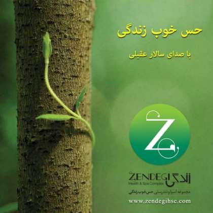 Salar Aghili - Hesse Khoobe Zendegi