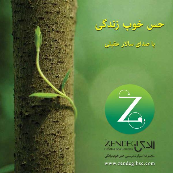 Salar Aghili Hesse Khoobe Zendegi دانلود آهنگ جدید سالار عقیلی به نام حس خوب زندگی