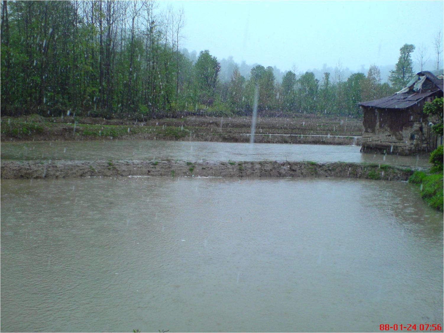 بارش برف 24فروردین1388 در روستای شولم