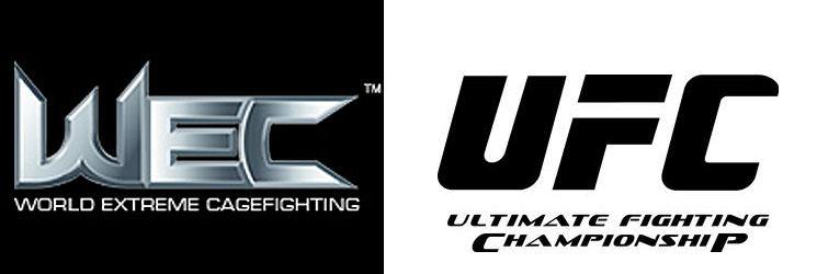 دانلود بهترینهای ستارگان UFC و Best of  WEC  UFC  Stars | WEC