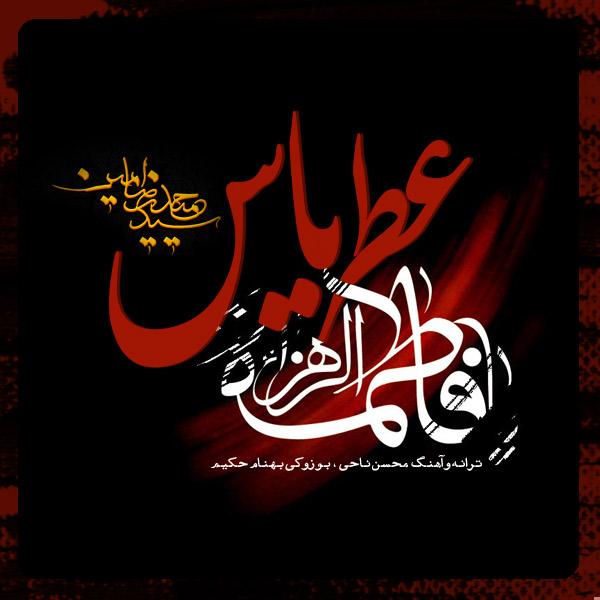 Hamidreza Amin Atre Yas دانلود آهنگ جدید سید حمیدرضا امین به نام عطر یاس