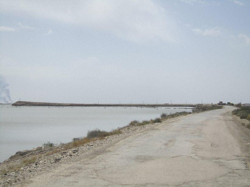 16  یادمان شهدای هور ، مقتل شهید علی هاشمی ، جزیره مجنون