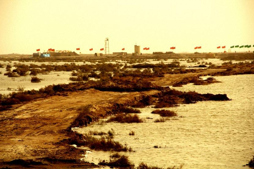 43  یادمان شهدای هور ، مقتل شهید علی هاشمی ، جزیره مجنون