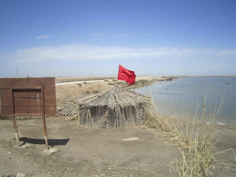 61  یادمان شهدای هور ، مقتل شهید علی هاشمی ، جزیره مجنون