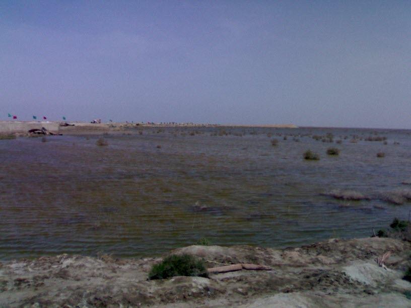 73  یادمان شهدای هور ، مقتل شهید علی هاشمی ، جزیره مجنون