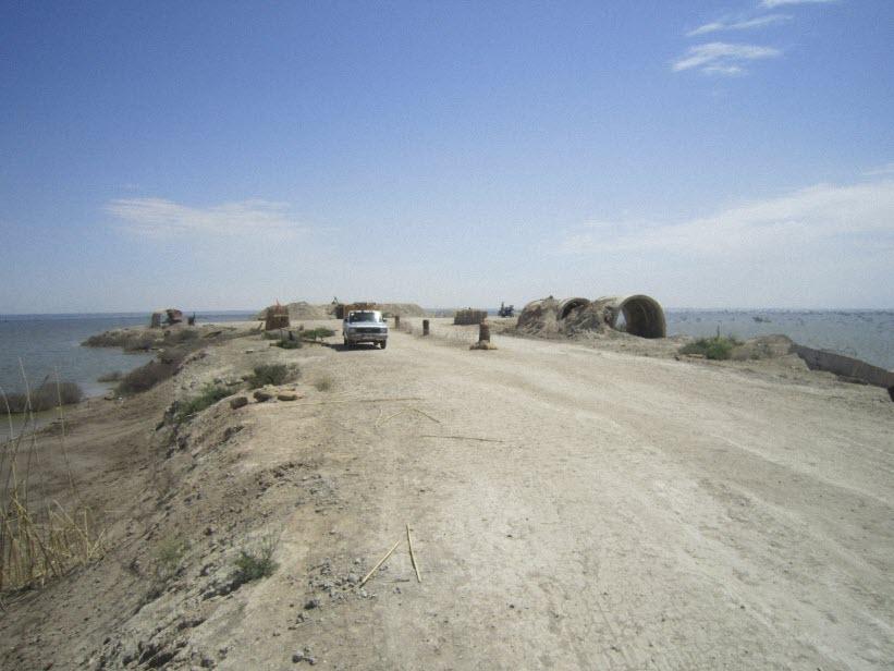 85  یادمان شهدای هور ، مقتل شهید علی هاشمی ، جزیره مجنون