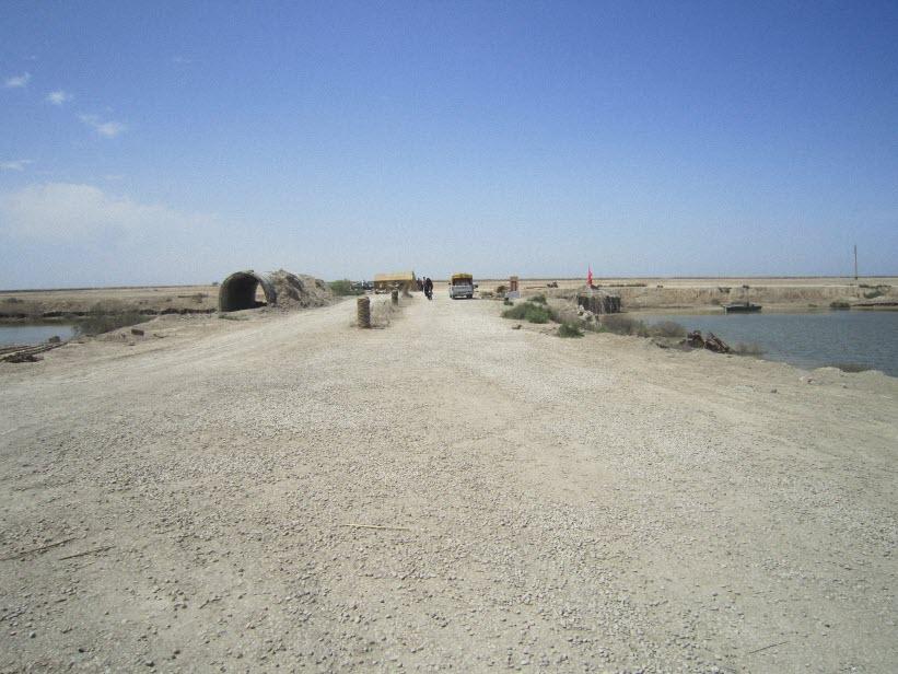 88  یادمان شهدای هور ، مقتل شهید علی هاشمی ، جزیره مجنون