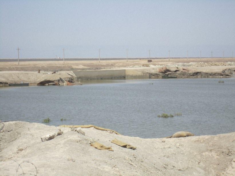 104  یادمان شهدای هور ، مقتل شهید علی هاشمی ، جزیره مجنون