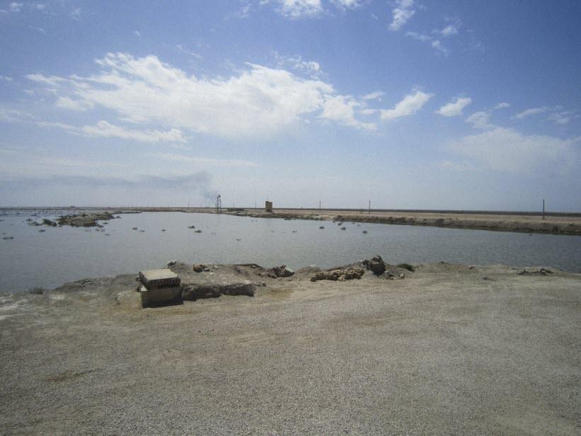 105  یادمان شهدای هور ، مقتل شهید علی هاشمی ، جزیره مجنون