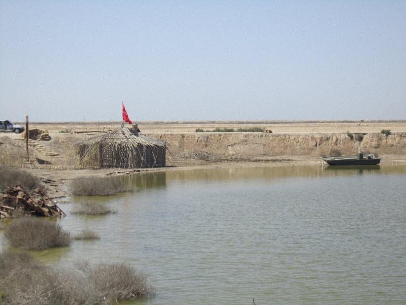 107  یادمان شهدای هور ، مقتل شهید علی هاشمی ، جزیره مجنون