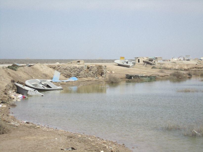 113  یادمان شهدای هور ، مقتل شهید علی هاشمی ، جزیره مجنون