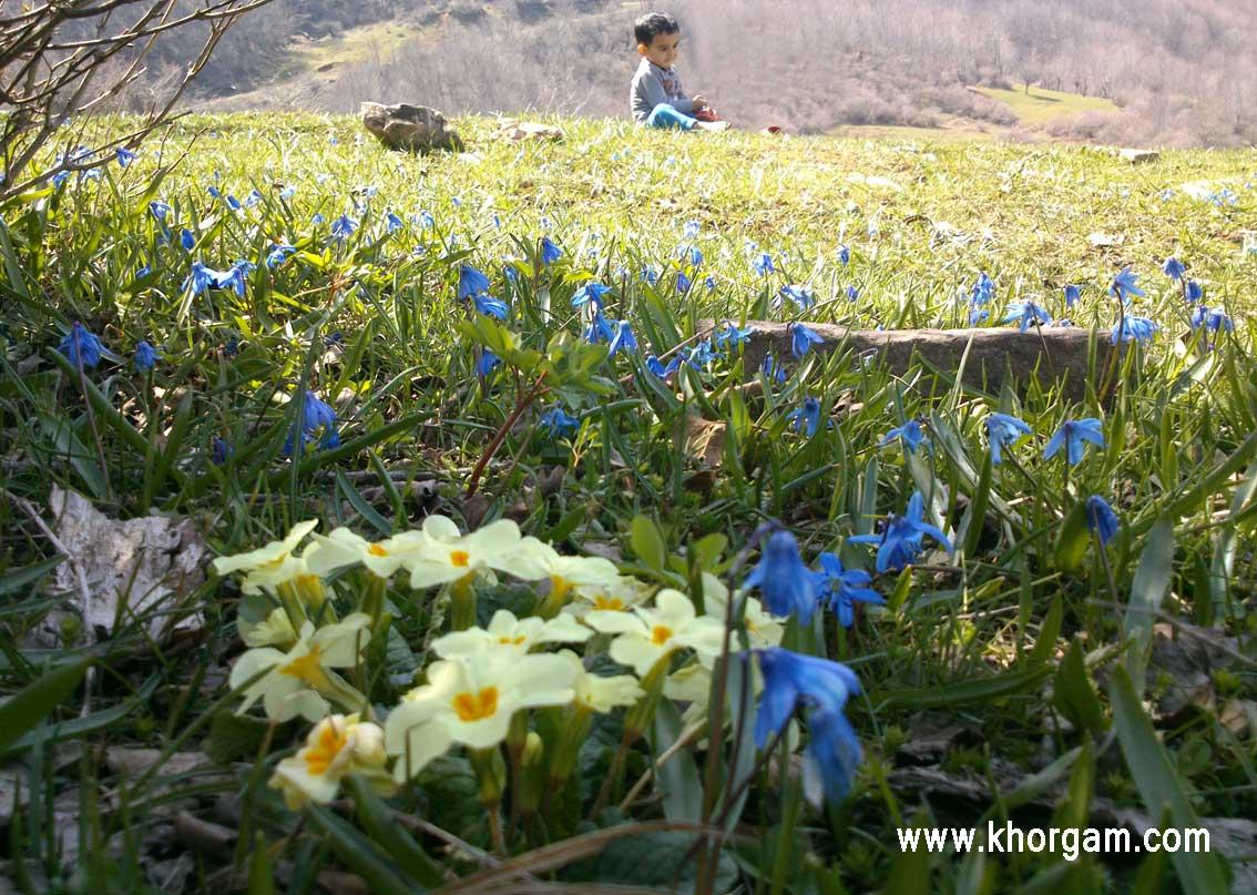 بهار93 بخش خورگام - چهارمحل