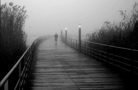 جاده های مه آلود