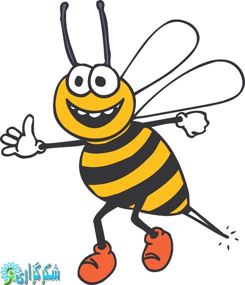 زنبور گزیدگی_نیش زنبور_درمان_معالجه_پانسمان_دارو_تغذیه