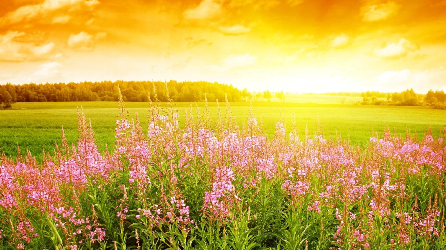 http://s5.picofile.com/file/8119898634/imagesalbum_blogsky_com_2_.jpg