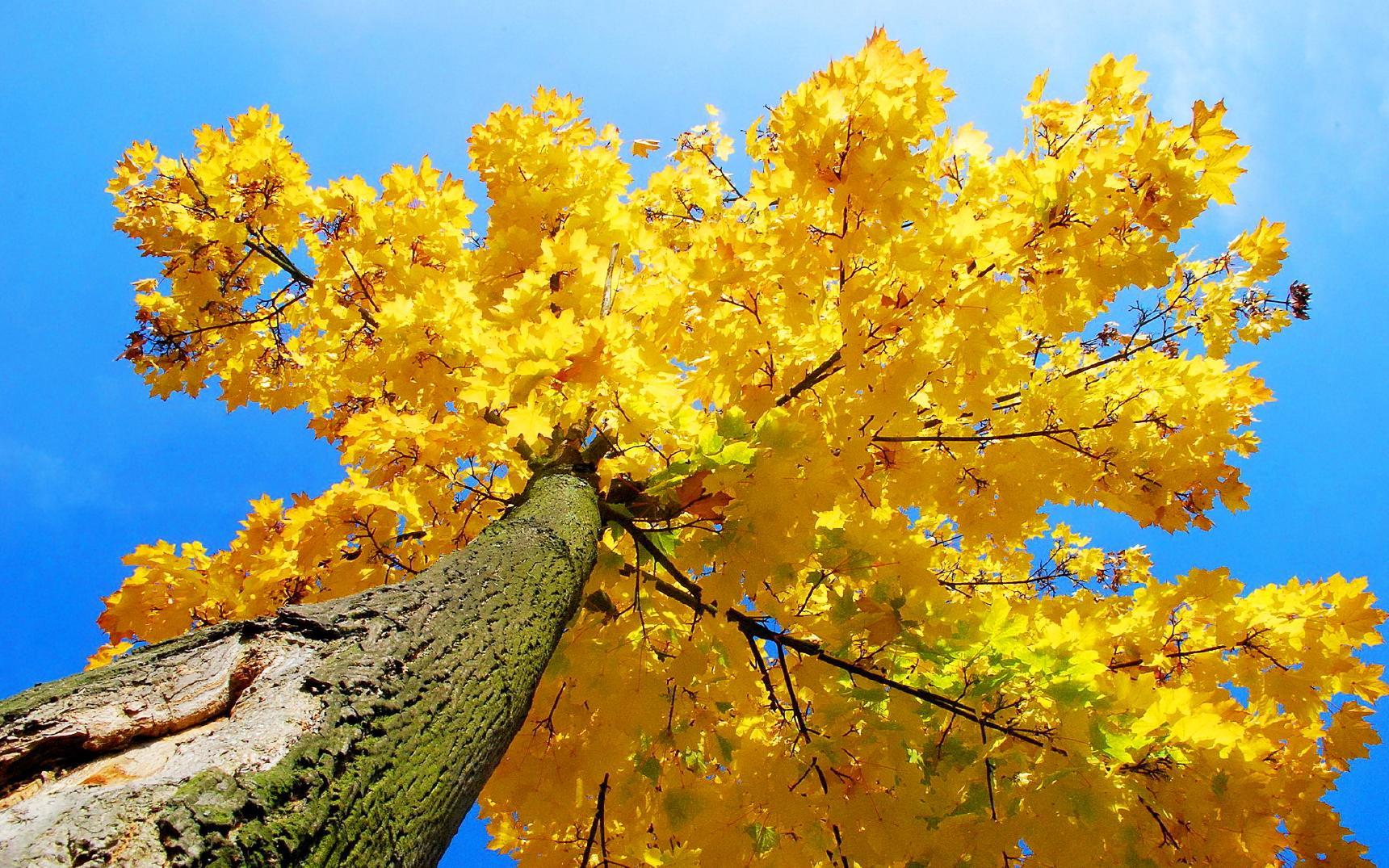 http://s5.picofile.com/file/8119899226/imagesalbum_blogsky_com_9_.jpg